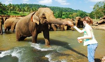 srilanka-package-image