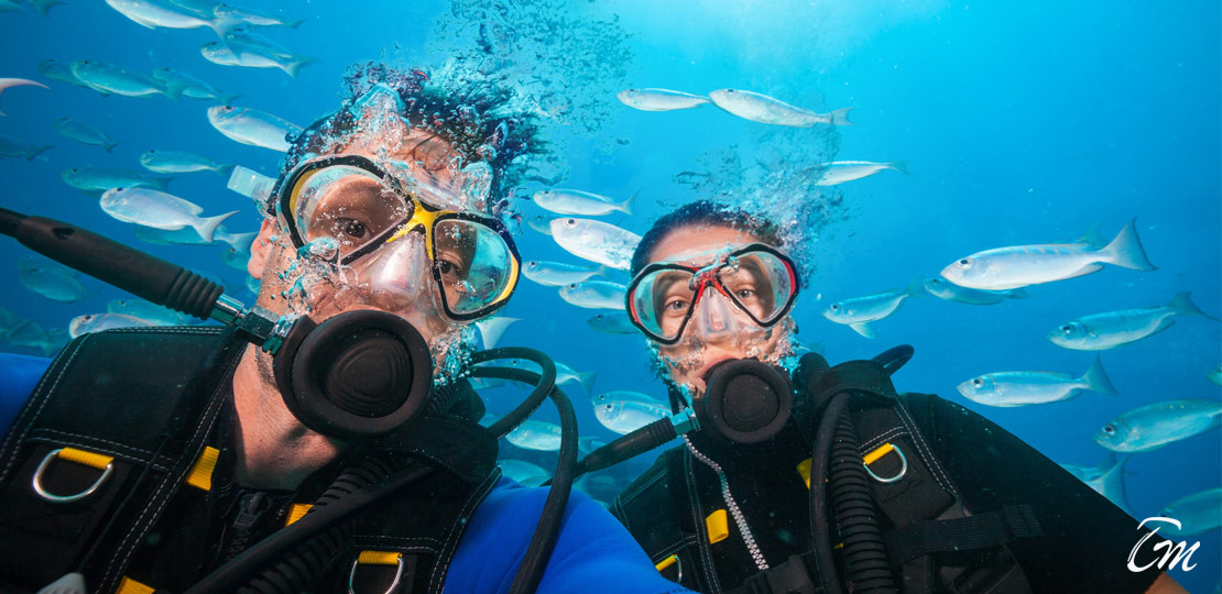 Best 10 Dive Sites In Maldives