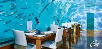 Maldives Under Sea Restaurant Ithaa Interior