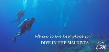 Vaavu atoll - Maldives best channel for divers
