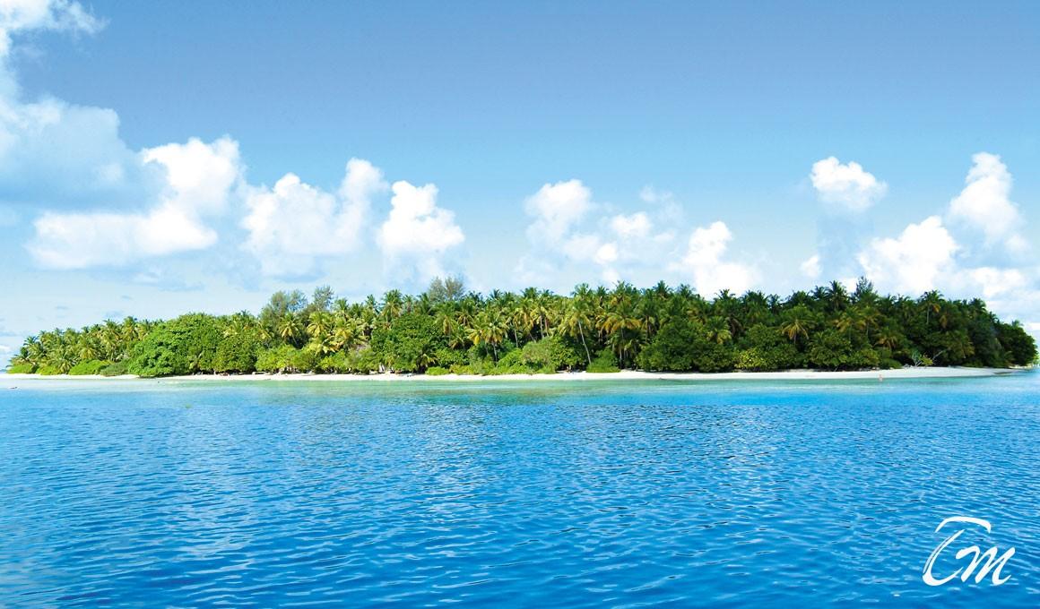 Biyadhoo Island Resort Maldives  Beach