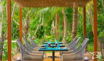 Pullman Maldives Maamutaa Resort - Phat Chameleon