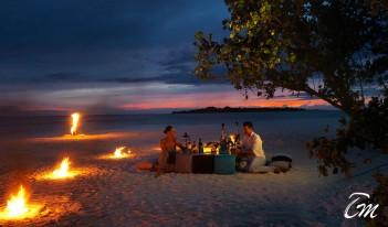 Cocoon Maldives - Palm Square