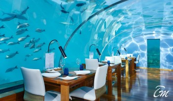 Conrad Maldives Rangali Island - Ithaa Under Sea Restaurant