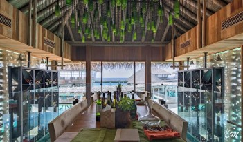Six Senses Laamu Maldives - Altitude Wine Cellar