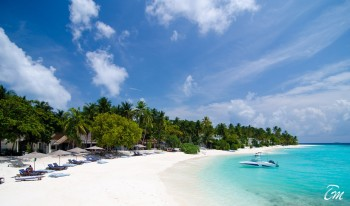 Amilla Fushi Resort And Residences Maldives - Emperor Beach Club View