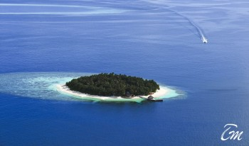 Angsana Ihuru Resort And Spa Maldives - Arial View