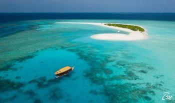 Brennia Kottefaru Maldives Sand Bank