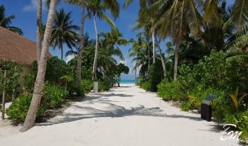 Cinnamon Velifushi Maldives Sandy Pathway