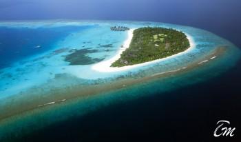 Coco Palm Dhuni Kolhu Maldives Island Aerial View