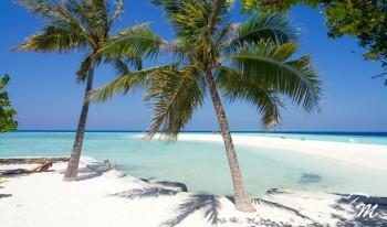 Embudu Village Maldives Sandbank