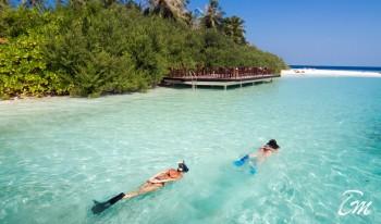 Embudu Village Maldives Snorkeling