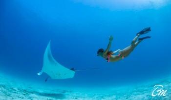 Snorkeling with Manta Ray at Emerald Maldives Resort and Spa
