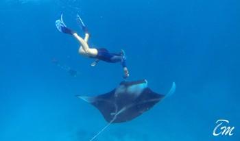 Kaani Beach Hotel Maafushi Maldives Snorkeling