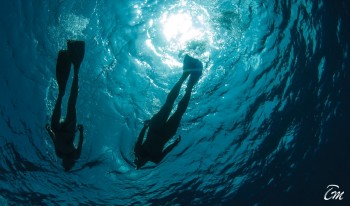Malahini Kuda Bandos Snorkeling
