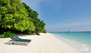 Royal Island Resort And Spa Beach Chairs