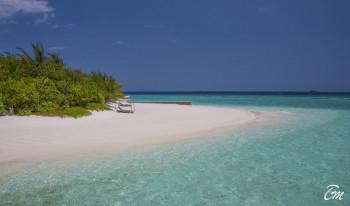 Coco Bodu Hithi Maldives Beach View