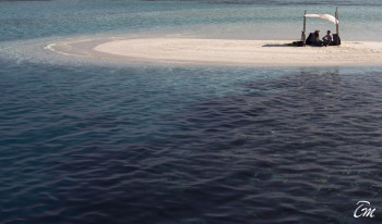 Coco Bodu Hithi Maldives Sandbank