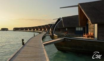 Como Cocoa Island Maldives - Over water villas