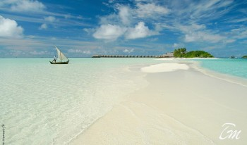 Como Cocoa Island Maldives Sandbank