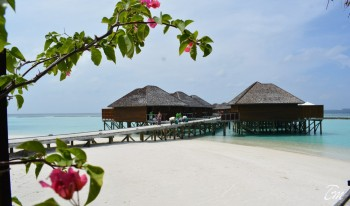 Vakarufalhi Maldives Water Villas