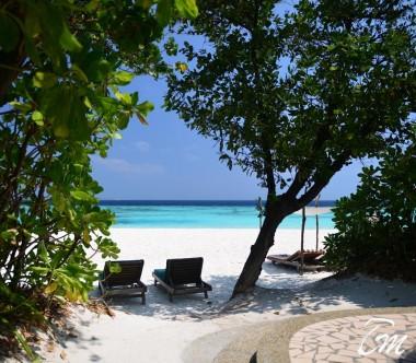 Coco Palm Dhuni Kolhu Maldives Deluxe Villa Beach View