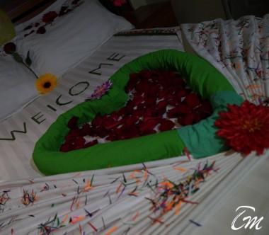 Honeymoon Arrangement Suite Room - Surfview Hotel Male